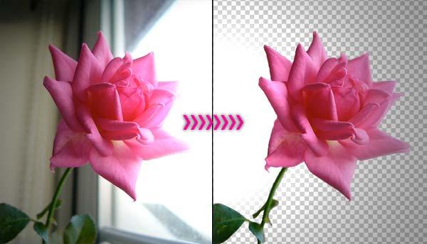 memisahkan objek dengan photoshop