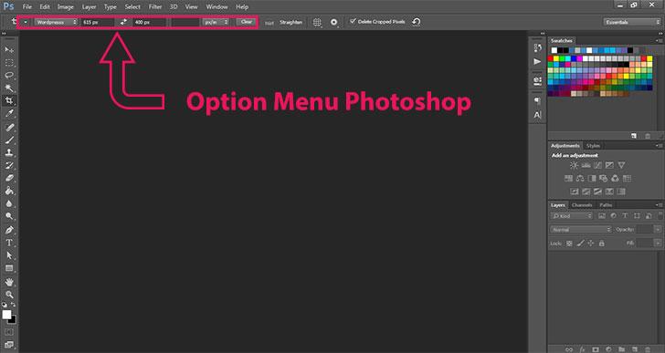 option-menu