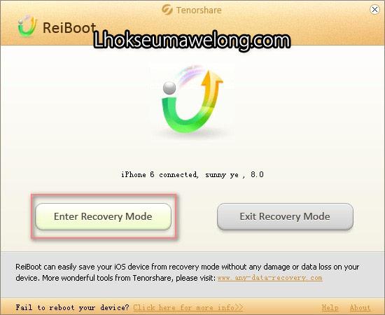 Menggunakan aplikasi Reiboot