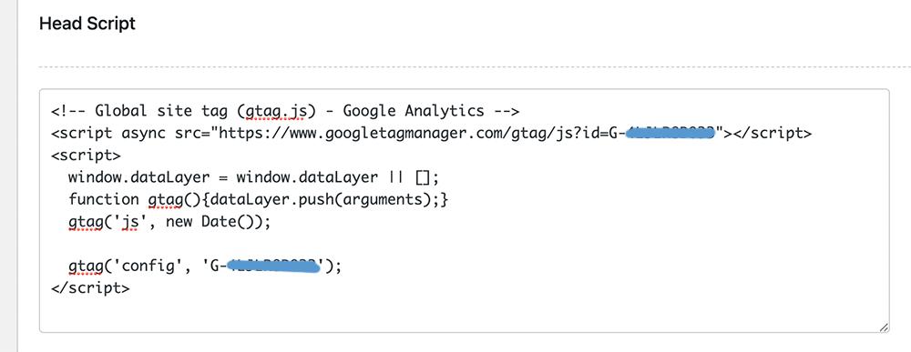 kode analytics di theme options